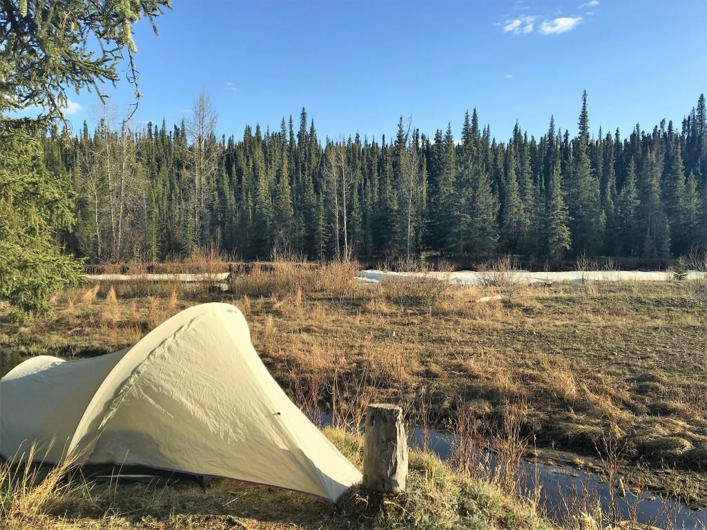 Buckinghorse River Campground