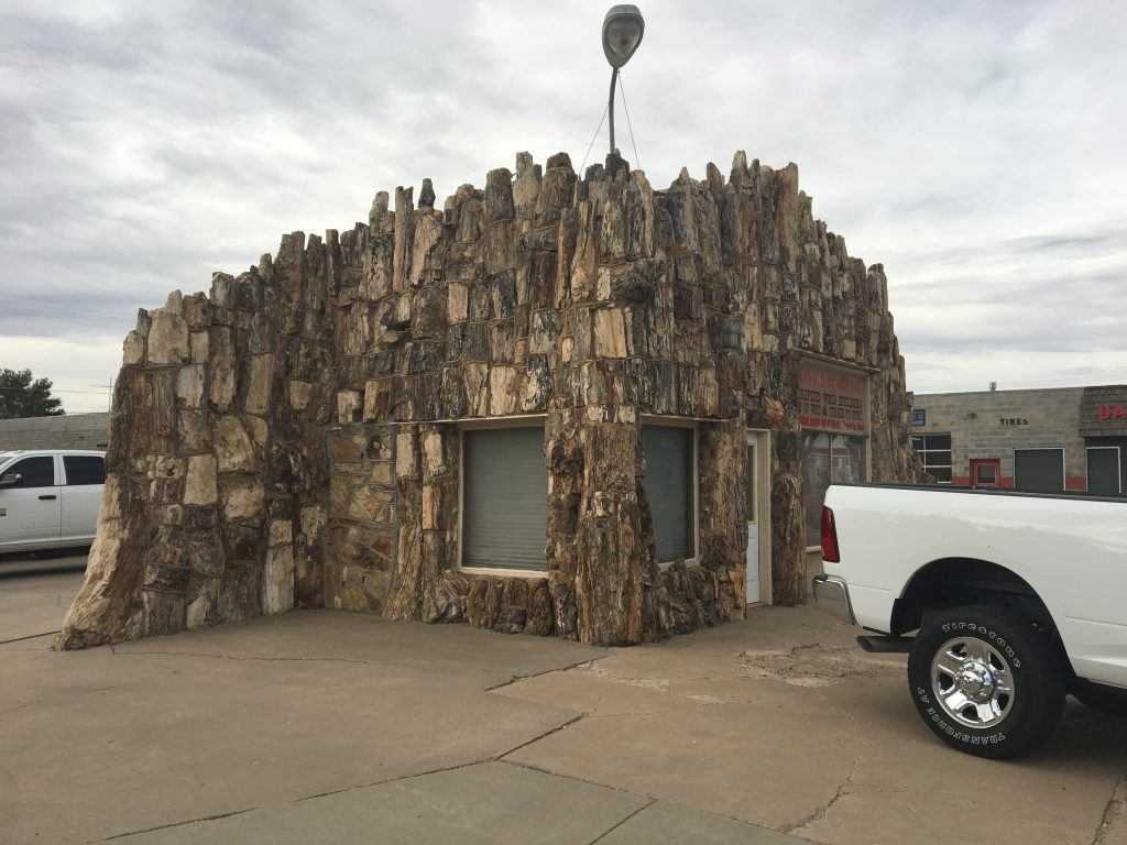 Petrified wood building
