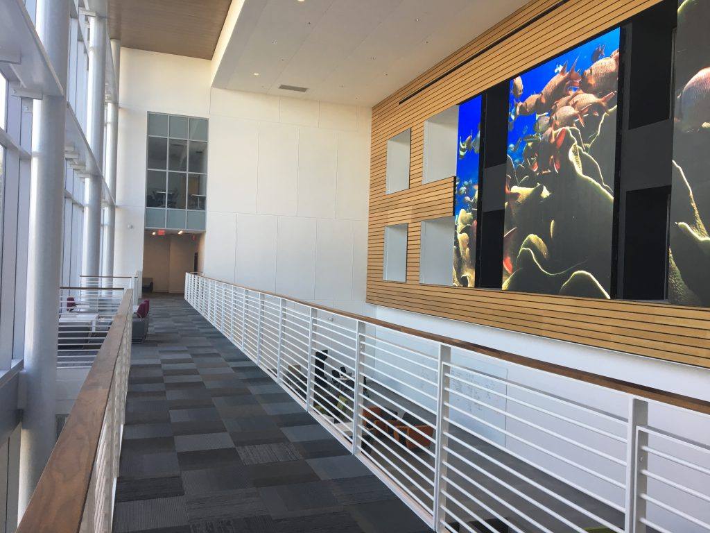 The new Onstead Science Building (old Foster Science Building), from the inside.